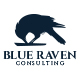 Blue Raven Logo