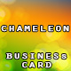 Chameleon Business Card