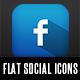 Flat Social Network Icons