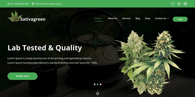 Sativagreen - Medical WordPress Theme