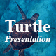 Turtle Power Point Presentation Template