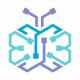 Butterfly Tech Logo