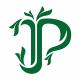 Premium P Letter Logo