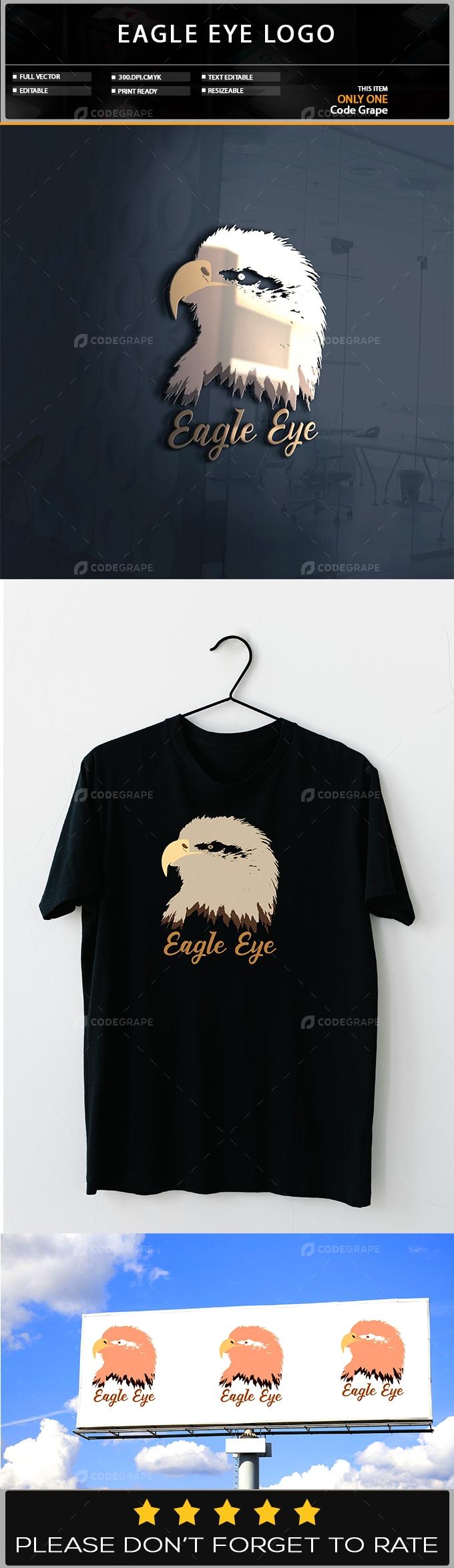 Eagle Eye Logo Design Template