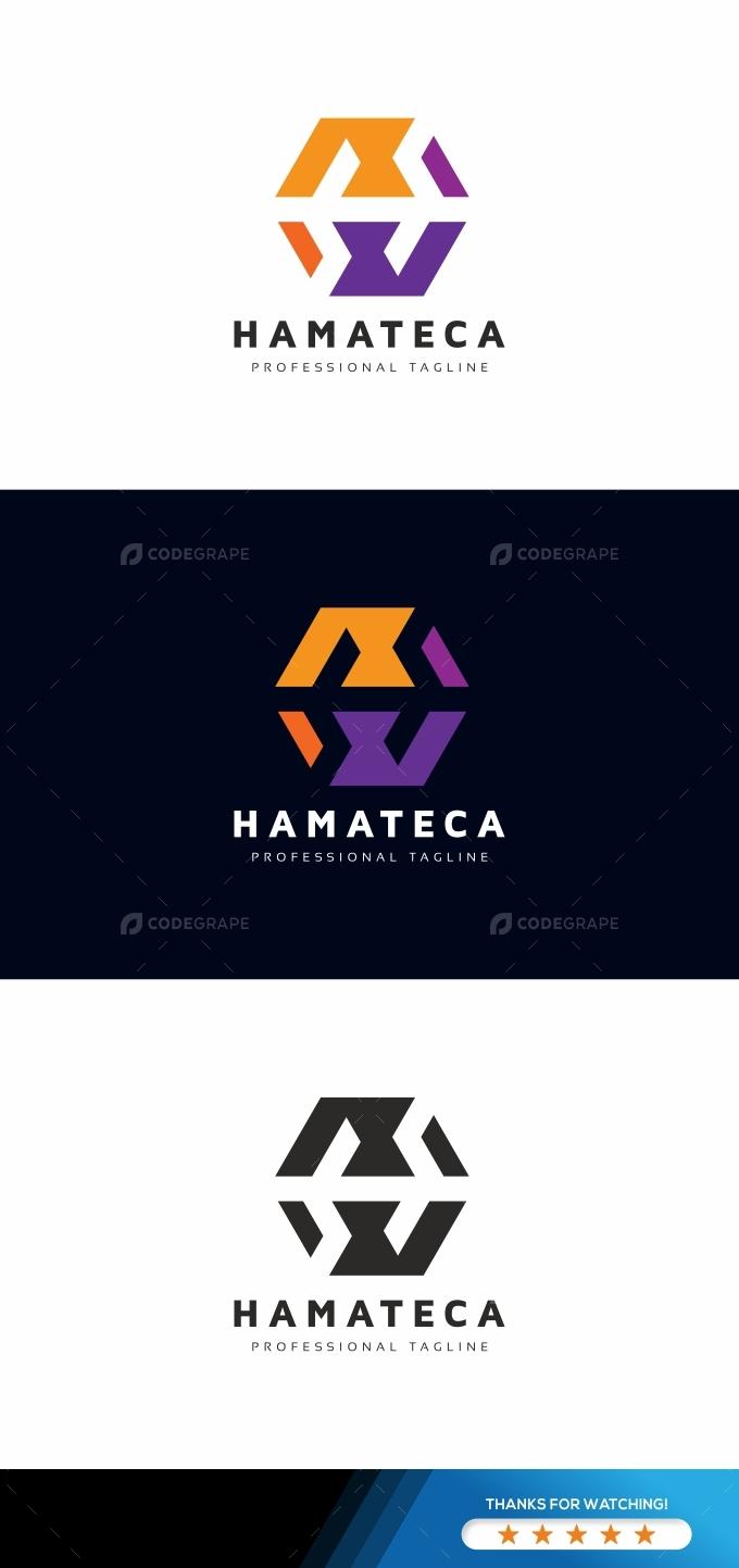 Hexagon H Letter Logo