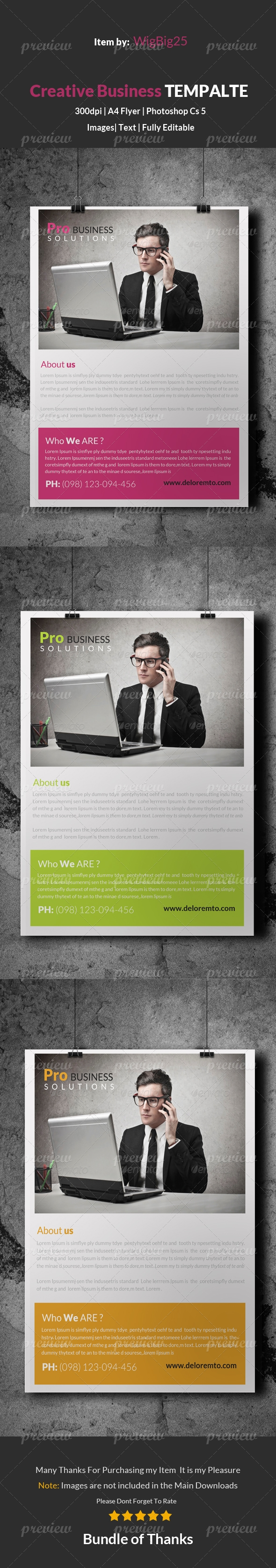 Corporate Business Solution Flyer Template