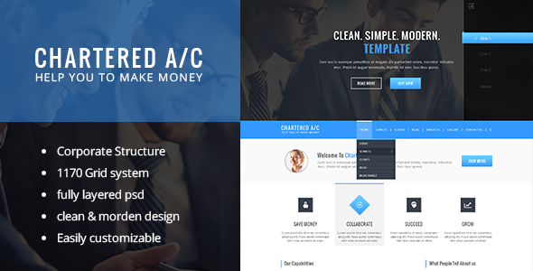 Charted Accounted PSD Template