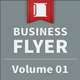 Business Flyer - Volume 01