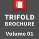 Trifold Brochure - Volume 01