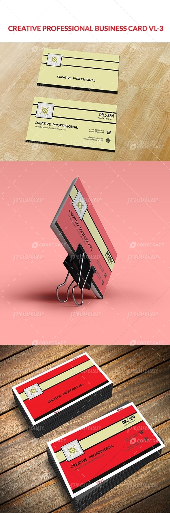 Creative Professional VL- 3 Business card