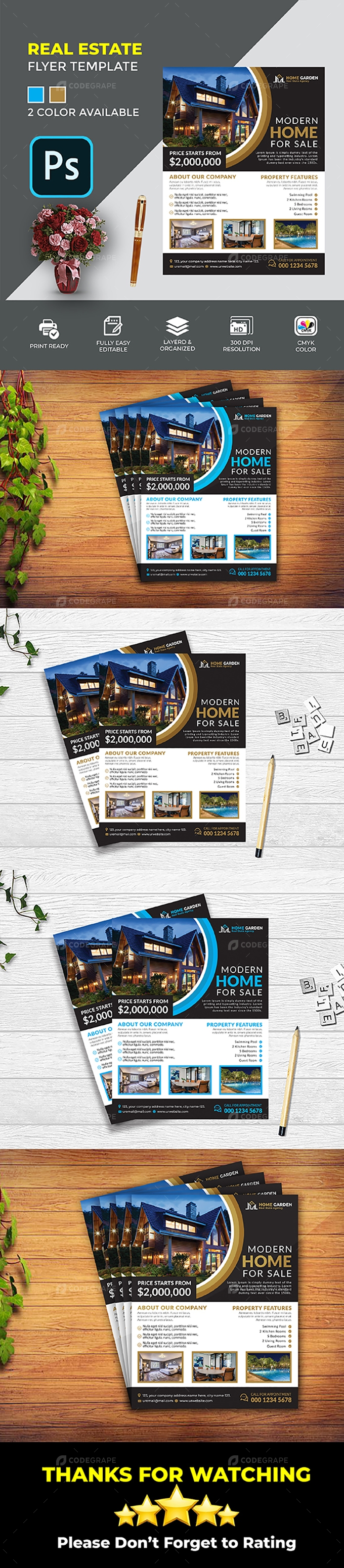 Real Estate Flyer Templeate