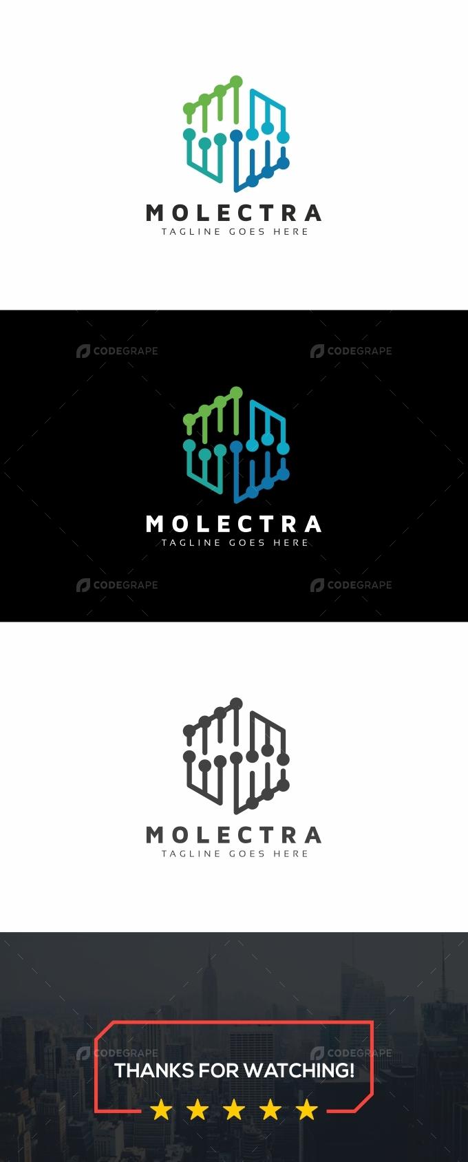 Molecular Hexagon Logo