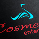Cosmetic Enterprises Logo Template