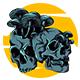 Skeleton Shrooms