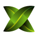Green Leaf with X Letter Logo