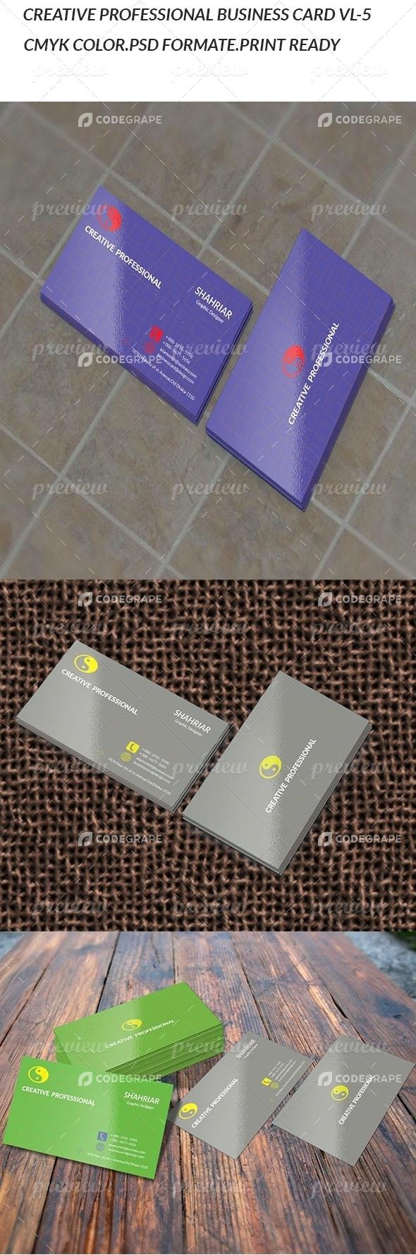 Creative Professional VL-5 Business card