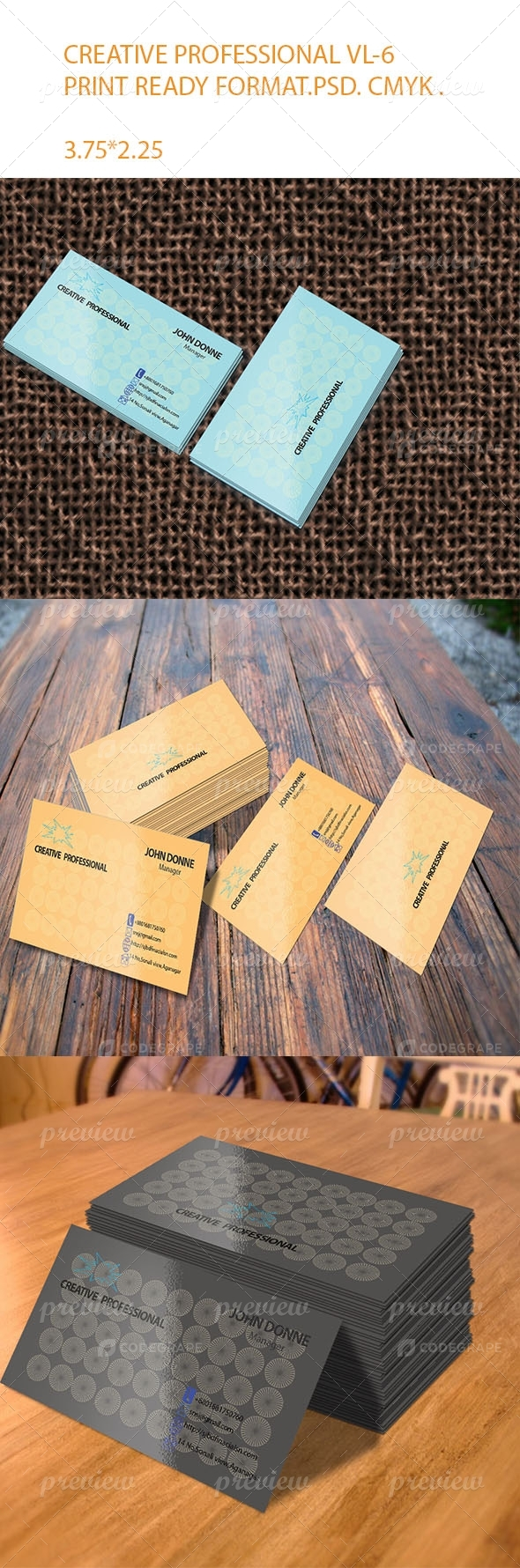Creative Professional VL-6 Business card