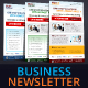 Multipurpose Modern Business Newsletter