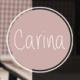 Carina - Personal & Portfolio WordPress Theme