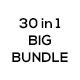Corporate Business Card BUNDLE 30 in 1