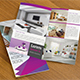 Passion Interior Bi Fold Brochure