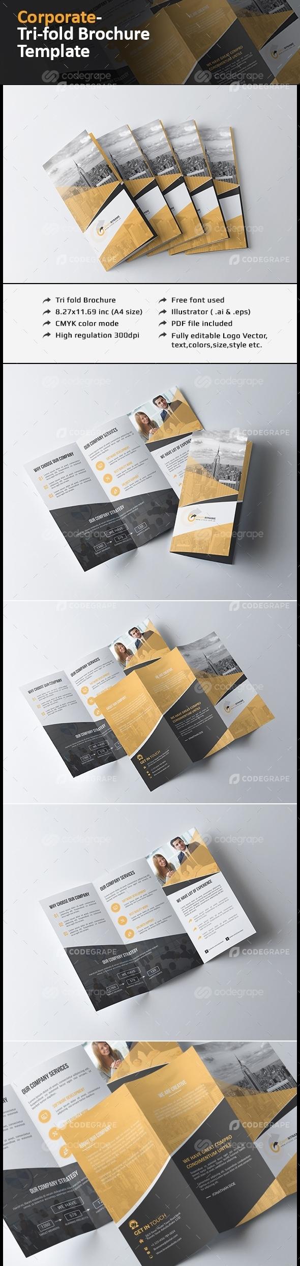 Tri fold Brochure Multipurpose
