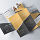 Tri fold Brochure Multipurpose