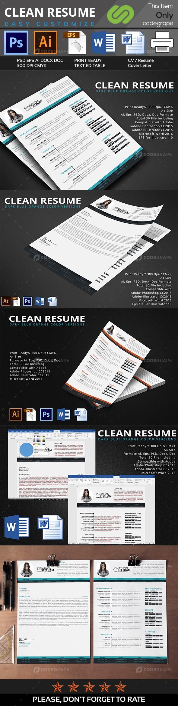 Clean Resume 2