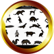 22 Animals Icon