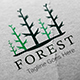 Forest Logo Template