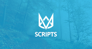 JavaScript, CSS, HTML5, PHP Scripts.