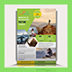 Travel Tours Flyer