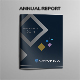 Annual Report Indesign