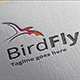 Bird Fly Logo Template