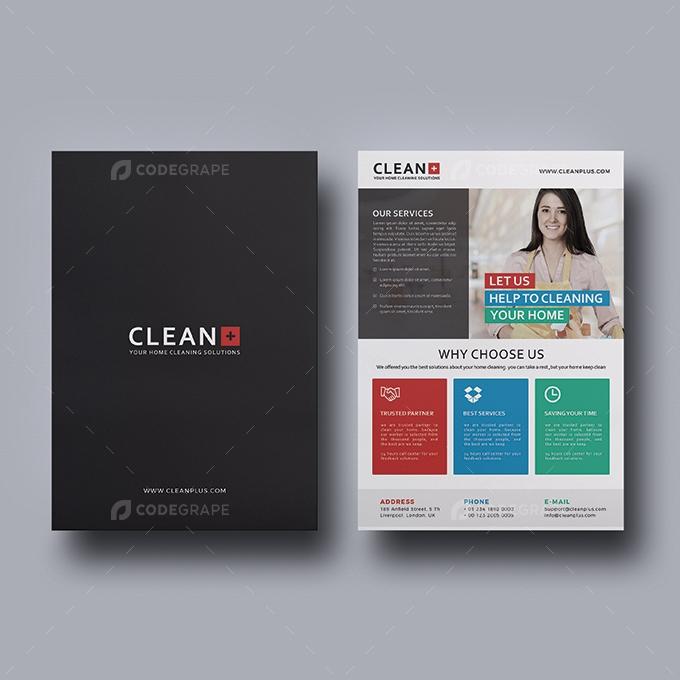 Cleaning Flyer Agency