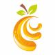 Orange Template Logo