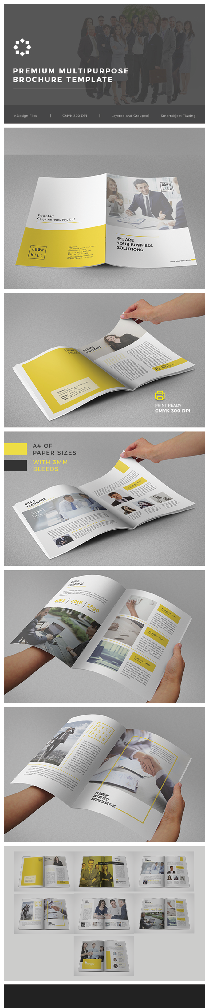 Multipurpose Business Brochure Template Vol. 02