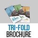 Corporate Tri-Fold Brochure Template 03