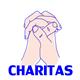 Charitas - PayPal Donation WordPress Plugin