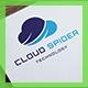 Cloud Spider Logo