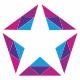 Insta Star Logo