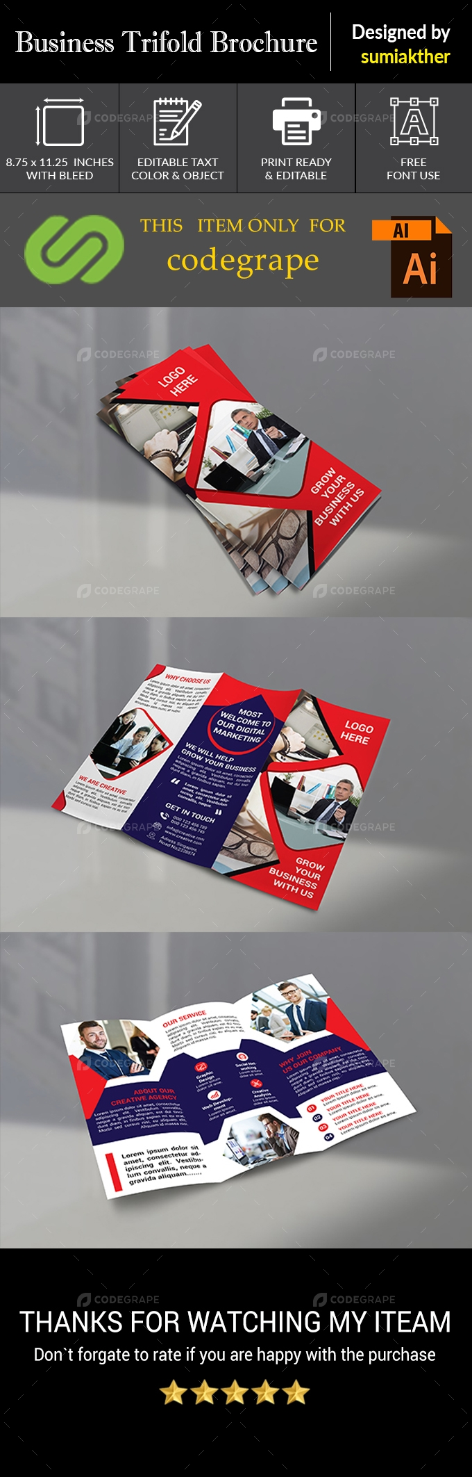 Corporate Trifold Business Brochure